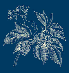 abstract floral sketch blue concept vector image