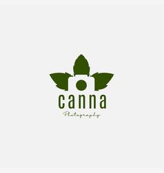 Camera in marijuana or cannabis icon vector