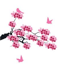 Cherry birds vector
