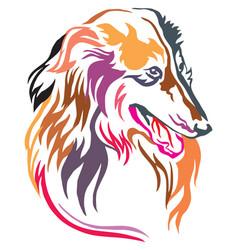 colorful decorative portrait of collie vector image