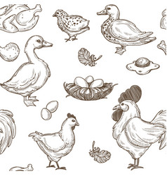 Poultry farm seamless sketch pattern vector