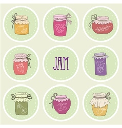 The set of hand drawn jars with home-made jams vector