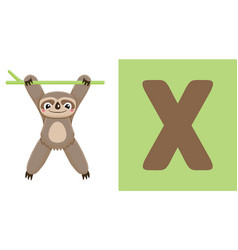 X is for xenarthra letter x xenarthra cute vector