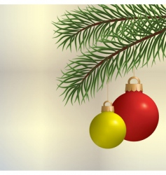 pine branch vector image
