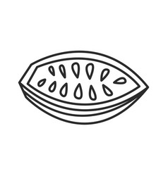 cocoa bean doodle hand drawn line vector image