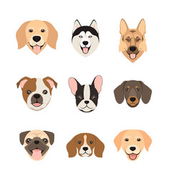 flat style dog head icons cartoon dogs faces set vector image