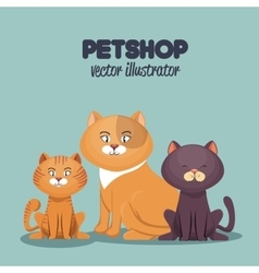 pet shop cats and dog care mascot vector image vector image