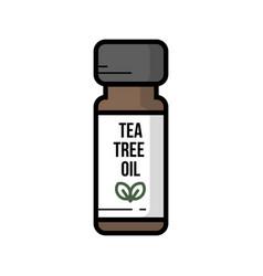 a bottle jar of tea tree oil vector image