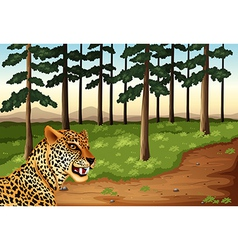 A leopard at the forest vector