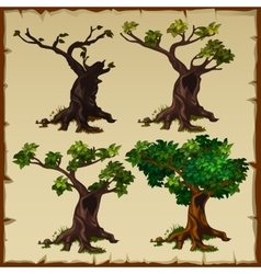 Four images of the tree with leaves and without vector image