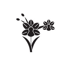 orchid black concept icon orchid flat vector image