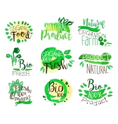 Organic Farm Food Promo Signs Colorful Set vector image vector image