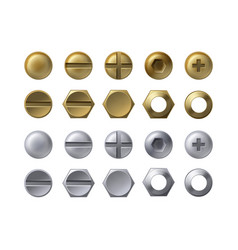 steel and brass heads vector image