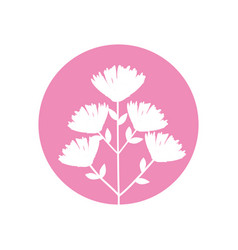 flower bouquet natural icon vector image vector image