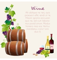 Wine set vector image