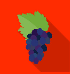 Bunch of grapes icon in flat style isolated on vector