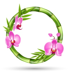 Green Bamboo Circle Frame with Pink Orchid Flowers vector