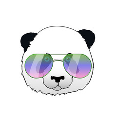 hand drawn panda in sun glasses hipster vector image
