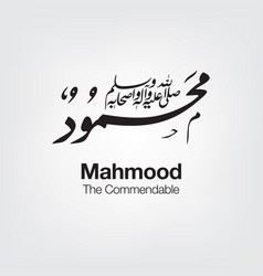 Mahmood vector