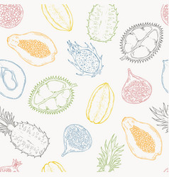pattern exotic fruits on a light background vector image