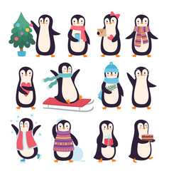 penguins funny winter characters active pose vector image