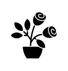 Rose bushes black glyph icon vector