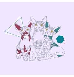 Three thin line cats vector image