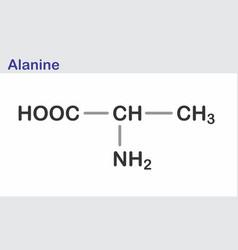 alanine skeletal formula vector image