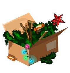 Christmas tree kept in box after holiday vector image