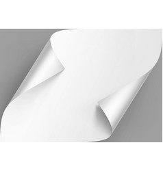 curled corners of white paper with shadow vector image
