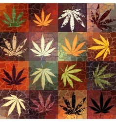Grunge hemp leaves vector