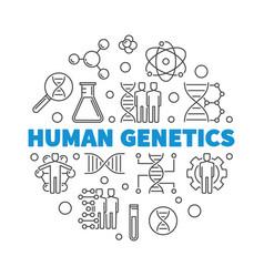 Human genetics round concept outline vector