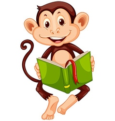 Little monkey reading a book vector