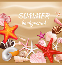 Seashell sand summer background vector image