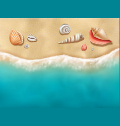 Seaside top view sun beach with seashells on sand vector