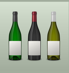 Set of 3 realistic wine bottles with blank vector
