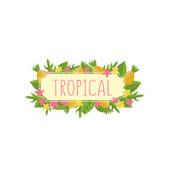 tropical summer label design element with palm vector image