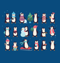 winter penguins cute wild bacharacters north vector image