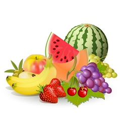 groups of fruits vector image vector image