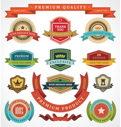 Vintage labels and ribbons vector image vector image