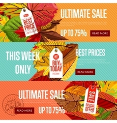 Autumn seasonal sale website templates vector
