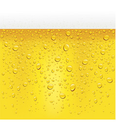 Beer pattern with many drops and foam vector