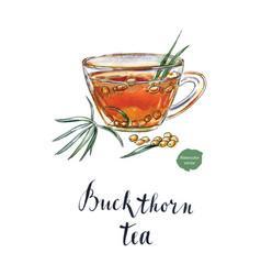 glass of buckthorn tea vector image