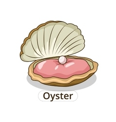 Oyster underwater animal cartoon vector