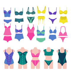 Set of beautiful fashion lingerie elements vector