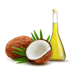 Coconut with oil vector image vector image