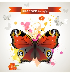 peacock butterfly vector image vector image