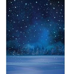 winter night stars vector image