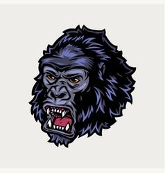 ferocious gorilla head colorful vintage concept vector image