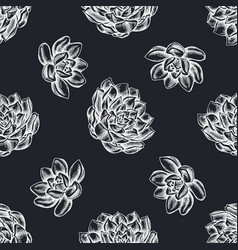 seamless pattern with hand drawn chalk succulent vector image